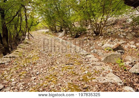 Ancient road dating back to the roman empire near Beli island of Cres (Croatia)