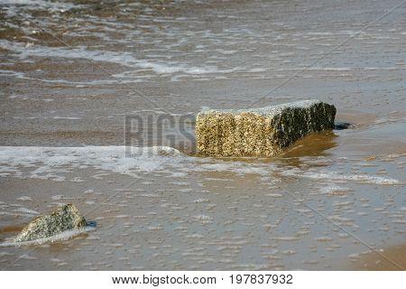 Stones on a sandy beach in Kolobrzeg in Poland