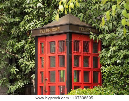Close up of a red telephone booth with a green phone surrounded by lush trees and shrubs in Tokyo Japan.