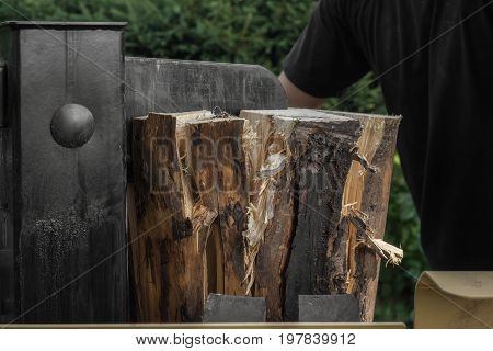 Firewood split with wooden splitter in the garden