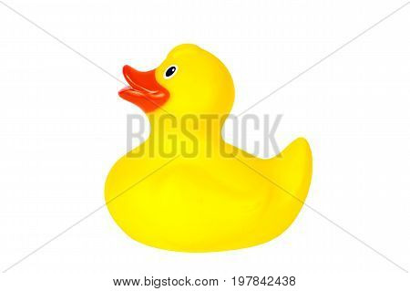 Yellow plastic rubber duck cut out on and isolated on a white background