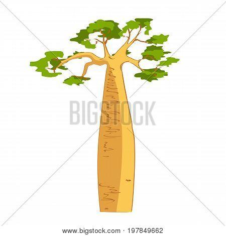 Beautiful Baobab tree silhouette. Adansonia grandidieri. Madagascar flora. Vector sketch illustration