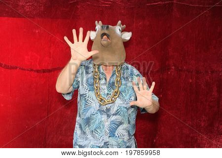 A man poses for photos in a Photo Booth. A man wears a Deer Head mask and poses like a deer caught in car headlights in a Photo Booth.