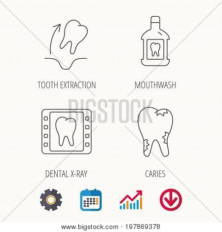 Tooth extraction, caries and mouthwash icons. Dental x-ray linear sign. Calendar, Graph chart and Cogwheel signs. Download colored web icon. Vector