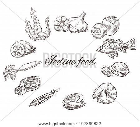 Iodine food vector sketch set, icons with black contour, medicine infographics or diet concept, persimmon, feijoa, sea bass, milk, carrot, garlic, walnut, salmon steak, pea, mussel, shrimp, seaweed