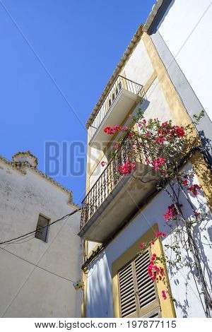 Typical architecture in Ibiza Old Town of whitewashed house with balconies and colorful climbing flowering plants