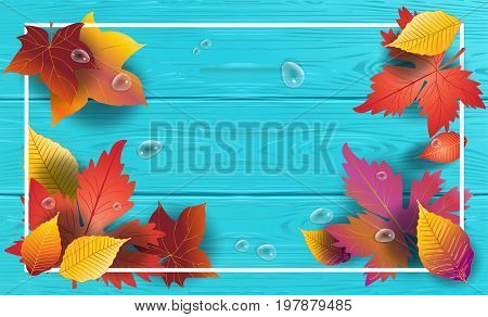 Autumn background with leafs fall on turquoise color wooden texture vector. Realistic wood pattern with water drops and maple leaves. Autumn Holiday decoration.