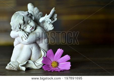 Angel guardian and flower on dark wooden background