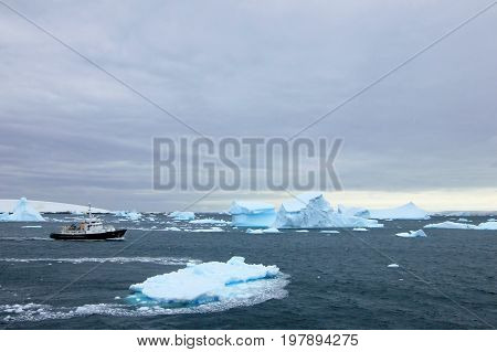 Cruise ship crusing around ice floes in Antarctic waters, Antarctica