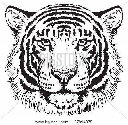 Black and white vector sketch of a tiger's face