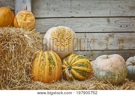 Pumpkins on a Hay against the Wooden Background