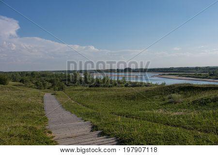 Rolling meadows beside the riverbank in summer