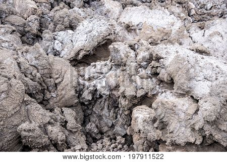 Lava rocks close up - Volcano of Etna Sicily Italy - May 25th 2017