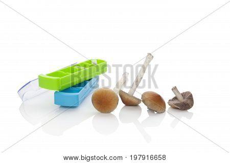 Magic mushrooms with pill organizer isolated on white background. Fresh hallucinogenic psychedelic mushrooms. Mircordosing.