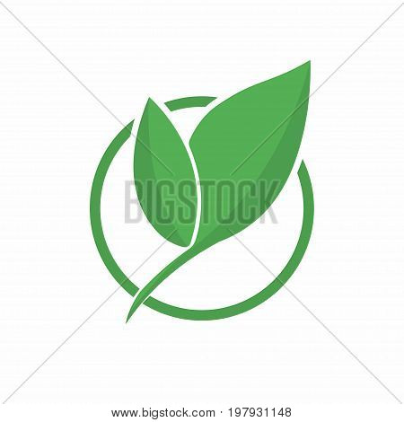 Ecology Logo. Abstract Eco Green Leaf Symbol, Icon. Eco Friendly Concept For Company Logo, Bio And O