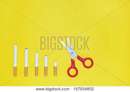Quit smoking concept, cigarettes on yellow background