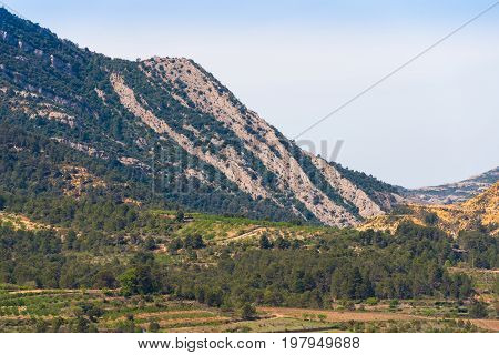 View Of The Forest And Mountains In The Province Catalunya, Spain. Copy Space For Text.