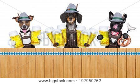 Bavarian Beer Dogs Row
