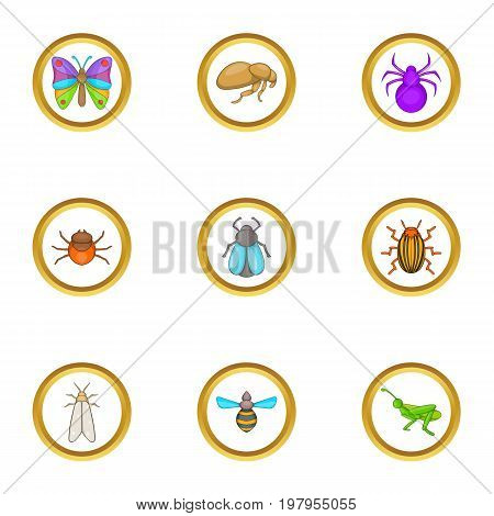Types of insects icons set. Cartoon set of 9 Types of insects vector icons for web isolated on white background