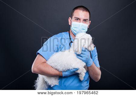 Veterinary Posing With White Bichon Dog