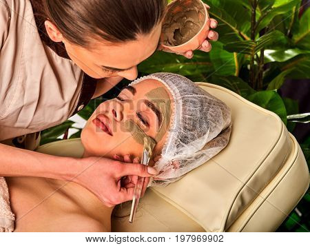 Mud facial mask of woman in spa salon. Massage with clay full face in therapy room. Therapeutic mud is used for cosmetic masks. Applying beautician with bowl therapeutic procedure on green plants