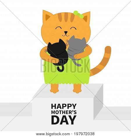Happy Mothers day. Cat hugging baby kitten. Kittens on hands. Winner stand First place podium pedistal. Kitty hug. Animal family. Cute cartoon pet character set. Flat design White background. Vector