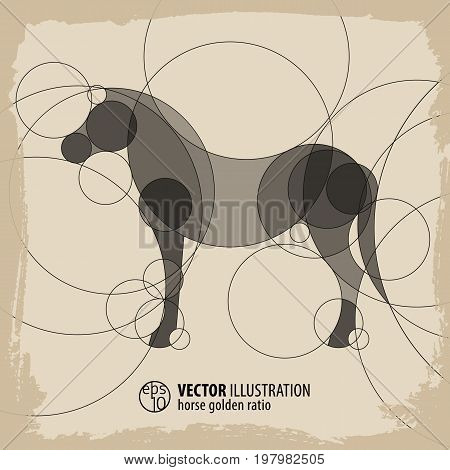 Abstract horse background with circles vector Illustration