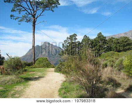 FROM CAPE TOWN, SOUTH AFRICA, A PATHWAY LEADING FROM THE FOREGROUND TOWARDS TABLE MOUNTAIN IN TH BACK GROUND 35pss