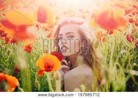 woman with long curly hair hold flower in field of red poppy seed with green stem on natural background summer spring drug and love intoxication opium
