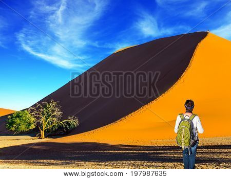 Orange, purple and yellow dunes of the Namib desert. Elderly enthusiastic woman with a green backpack is taking pictures of a landscape. The concept of extreme and exotic tourism