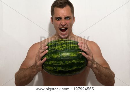 The guy is trying to crush a huge watermelon in his hands. A guy with a bare torso on a light background.