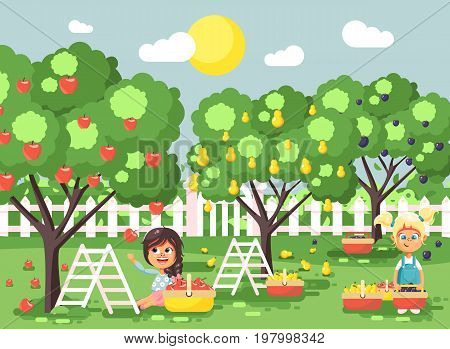 Stock vector illustration cartoon characters children two little girls harvest ripe fruits autumn orchard garden from plum, pear, apple tree, put crop in full basket landscape scene outdoor flat style