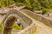 a   characteristic  bridge  of a piedmontese alpine village / a   characteristic  bridge  of a piedmontese alpine villagea romanesque bridge made of donkey back of of the 17th century at the entrance to the village of Fondo in Piedmont Italy poster