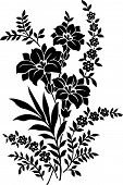 Ornamental flowers on white background drawn in black poster