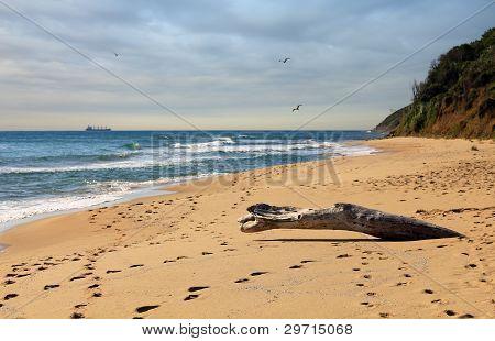 Irakli beach on the Bulgarian Black Sea Coast
