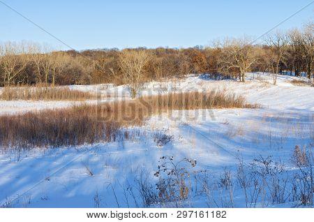 Prairie Hills And Woodlands Of Battle Creek Regional Park In Saint Paul Minnesota