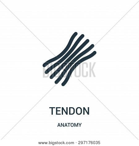 Tendon Icon Isolated On White Background From Anatomy Collection. Tendon Icon Trendy And Modern Tend