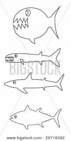 Fish outlines