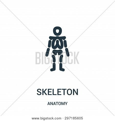 Skeleton Icon Isolated On White Background From Anatomy Collection. Skeleton Icon Trendy And Modern