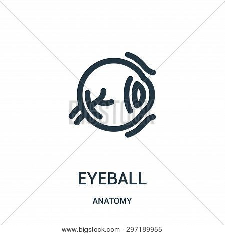 Eyeball Icon Isolated On White Background From Anatomy Collection. Eyeball Icon Trendy And Modern Ey