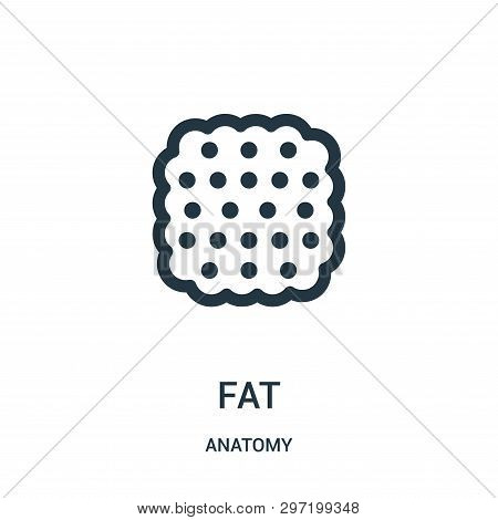 Fat Icon Isolated On White Background From Anatomy Collection. Fat Icon Trendy And Modern Fat Symbol