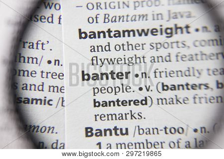 The Word Or Phrase Banter In A Dictionary.