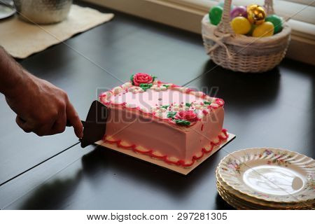 Birthday Cake. Pink Ice Cream Birthday Cake. Blank with room for text. food and drink. Woman or Girls Birthday Cake.