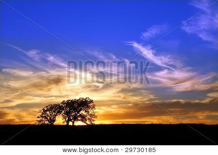 Byron Forest Preserve Sunset