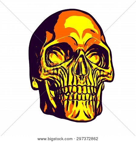 Golden Human Skull Head On White Background