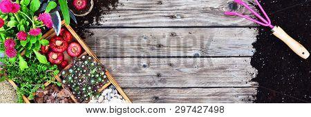Garden Tools, Flowers, Fertilizers, Seeds, Garden Tools On A Wooden Background. Spring Garden Workin