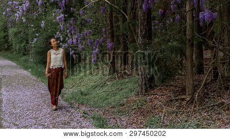 Asian woman in sarong walking on sidewalk covered with wisteria petals and loking up at flowering wisteria plants poster