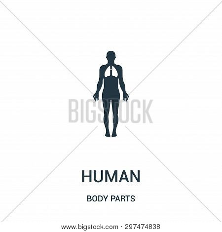 Human Silhouette With Focus On The Lungs Icon Isolated On White Background From Body Parts Collectio