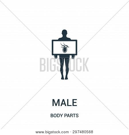 Male Silhouette With Body Organ In X Ray View Icon Isolated On White Background From Body Parts Coll