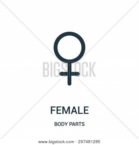 Female Sign Icon Isolated On White Background From Body Parts Collection. Female Sign Icon Trendy An